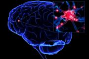 Disturbi neurologici e psichici